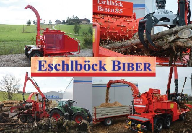 EschlböckBiber